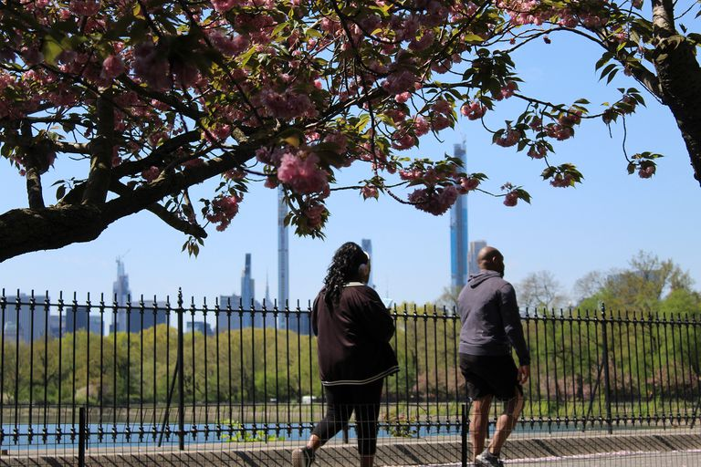 Dos corredores sin barbijo ni tapabocas, en el Central Park