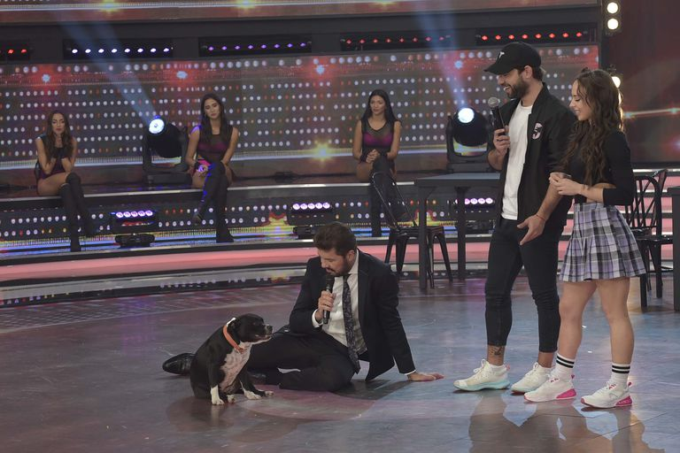 """La Academia: Agustín """"Cachete"""" Sierra se llevó el mejor puntaje y lo celebró con su perra Marta"""