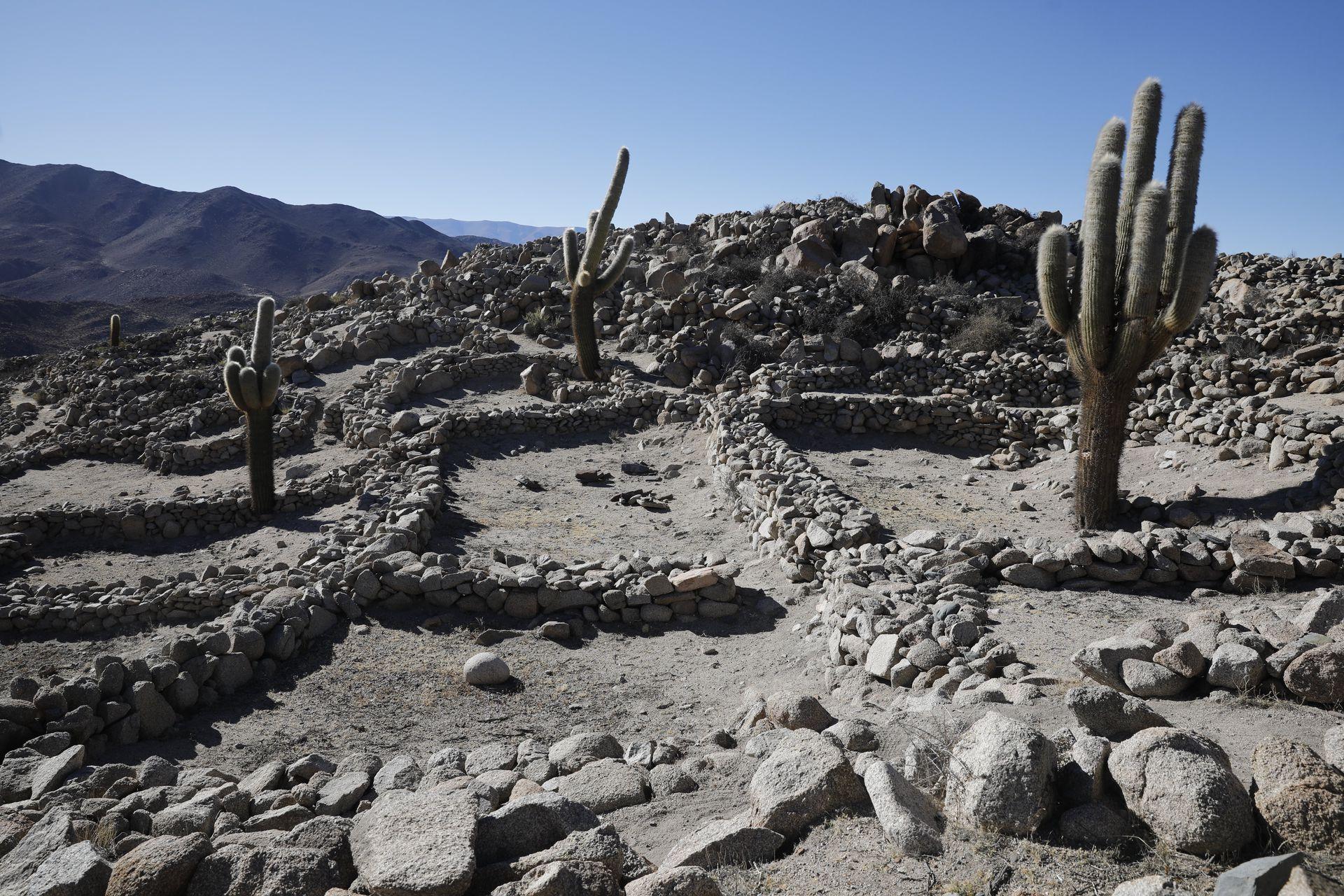Las Ruinas de Tastil, declarada Monumento Histórico Nacional