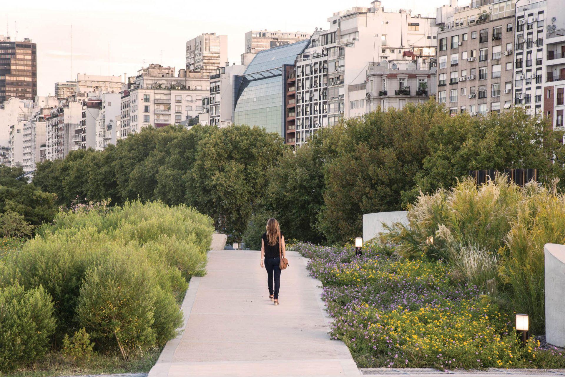 En un parque en pleno centro urbano se impulsa la restauración del paisaje con plantas nativas que atraen aves e insectos, apuntando también a que funcione sin riego y sin agroquímicos. Arquitectura y Paisajismo: Edgardo Minond y Estudio Bulla.