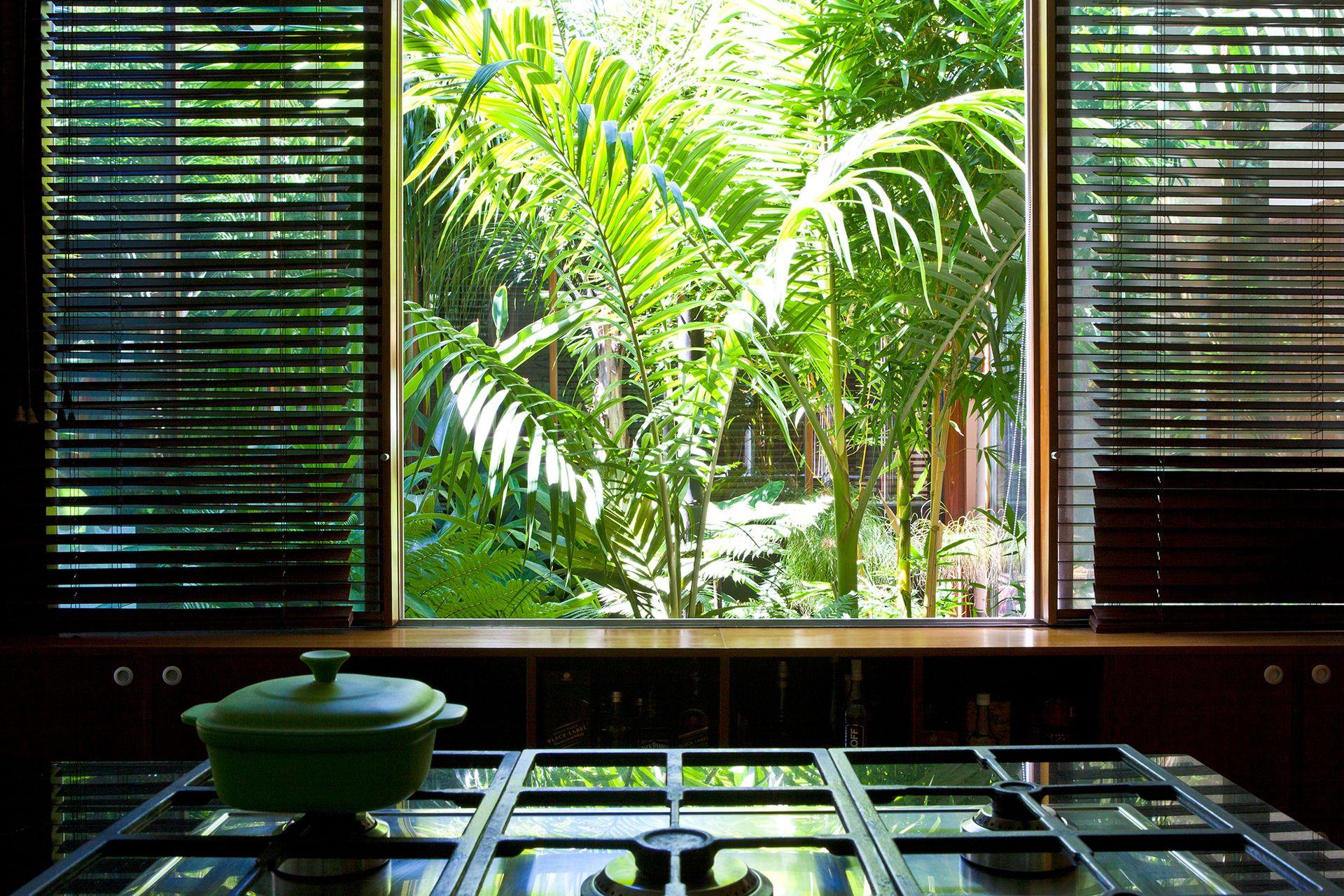 Ventanas corredizas se abren francamente al patio interior diseñado por el paisajista Daniel Mamani, desde el que se asoman palmeras y helechos arborescentes.