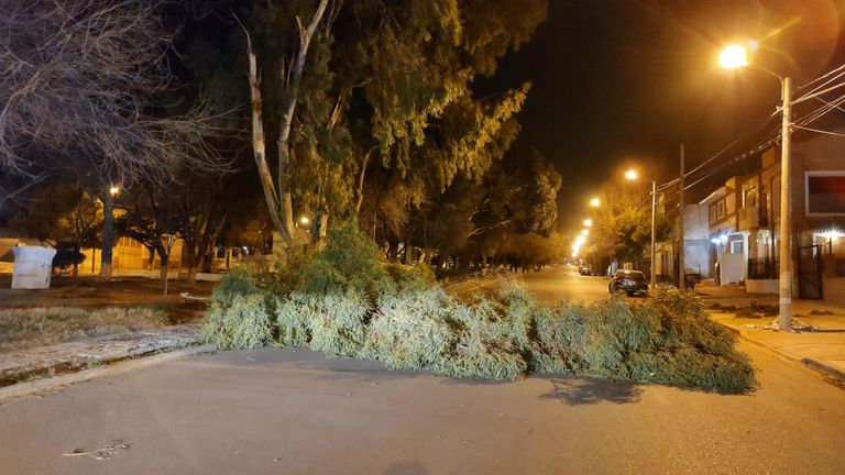 """La """"noche de furia"""" dejó postes y árboles caídos"""