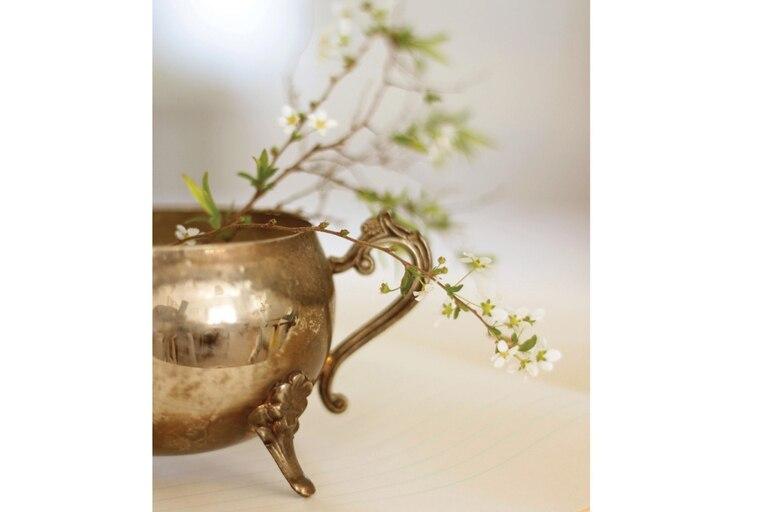 Lo delicado de estas mínimas flores silvestres toma cuerpo dentro una sólida azucarera de plata. No es el caso de estos yuyitos, que rápidamente se marchitan, pero la mayoría de las flores se pueden guardar (con florero y todo) en la heladera, en la parte de las verduras, menos fría.
