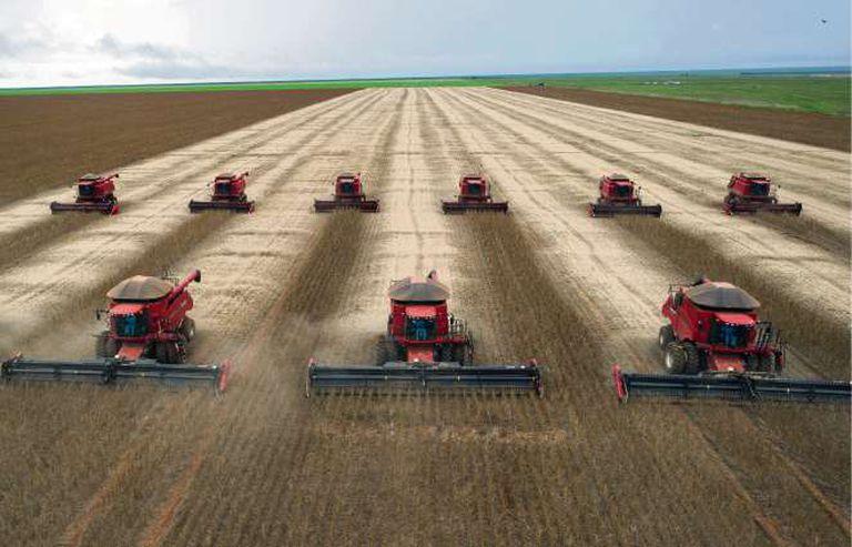 Con la siembra adelantada, Brasil está en marcha hacia una cosecha récord de soja