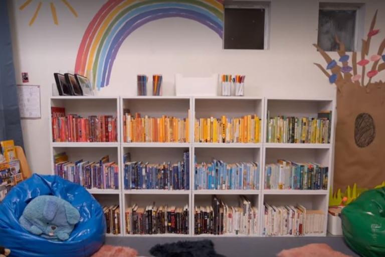 El rincón de lectura con los libros ordenador por color para facilitar el orden. Imagen: Netflix