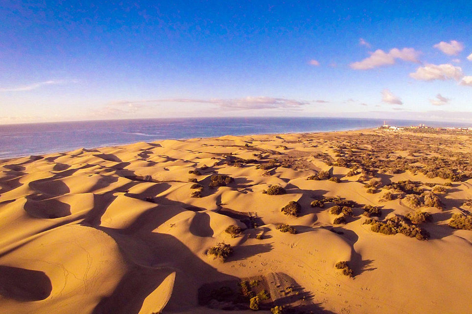 Campo de dunas en Maspalomas, Gran Canaria.