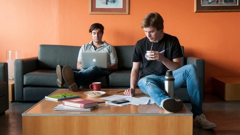 El 25 por ciento de los jóvenes eligieron carreras como computación, ingeniería y arquitectura.