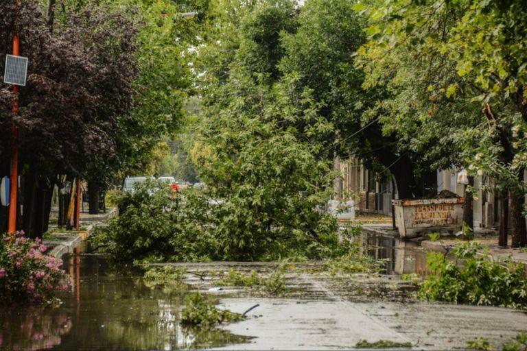 El Gobierno provincial y el intendente de Villa Mercedes trabajan en conjunto para asistir a los damnificados por el temporal.