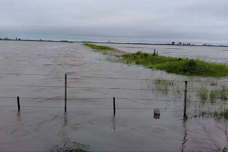 En la cuenca del Vila Cululú, Santa Fe, muchos campos quedaron bajo el agua