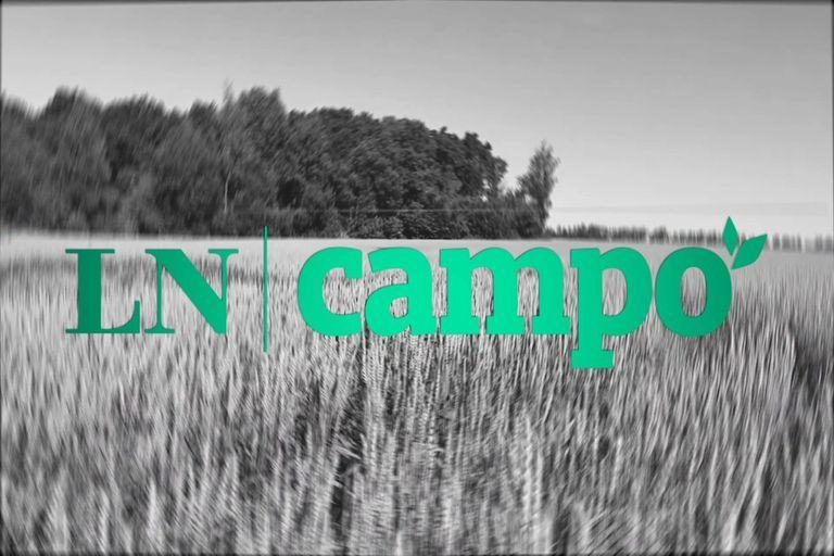 LN Campo: el nuevo sitio que acompaña la evolución de un sector clave