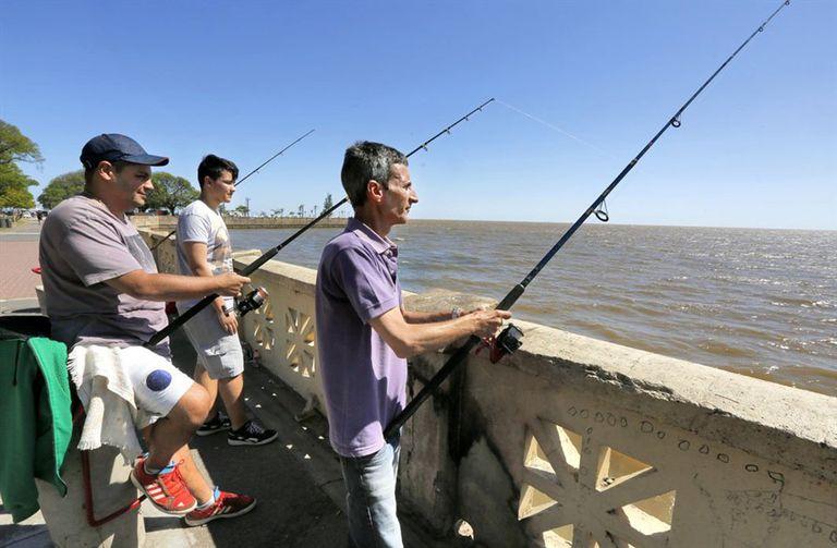 Los pescadores llegan desde lejos en busca de dorados y bogas