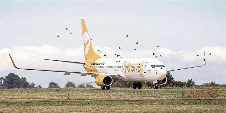 Low cost: las aerolíneas se rearman, luego de un duro año en tierra